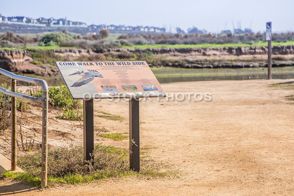 Bolsa Chica Ecological Reserve Huntington Beach California