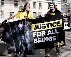 Climate Protestors, Edinburgh, 19 September 2019