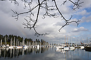 At Stanley Park, sailboats reflect in Coal Harbour, in Downtown Vancouver, British Columbia, Canada.