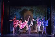 Bay Pointe Ballet performs Bruce Steivel's Dracula at the Victoria Theatre in San Francisco, California, on November 12, 2016. (Stan Olszewski/SOSKIphoto)