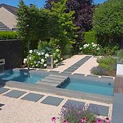 Modern Garden 1002
