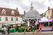 People shopping at market stalls by the Buttercross, Bungay, Suffolk, England, UK