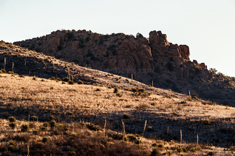 Shadows on hills and sotol plants, Ladder Ranch, west of Truth or Consequences, New Mexico, USA.
