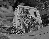 Building Mural. Street Photography in Lisbon. Image taken with a Nikon D850 camera and 8-15 mm fisheye lens.