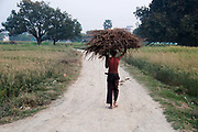 Bihar India March 2011.Young boy carrying straw.
