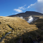 The walking path on the Tangariro Alpine Crossing.  The Tongariro Alpine Crossing is a 7-8 hour hike traversing two active volcanoes within the Tongariro National Park, North Island, New Zealand.  It is considered to be the best one day hike in New Zealand and in the top 10 one day hikes in the world. Packed into the 19.4km hike is an array of diverse landscapes and vegetations. From tussock like alpine meadows, to rugged lava flows, desert like craters and emerald lakes.  The Tongariro Alpine  9th January 2011. Photo Tim Clayton..