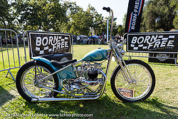BF11 invited builder Tom Heavey's 1953 Triumph custom at the Born Free Motorcycle Show (BF11) at Oak Canyon Ranch, Silverado  CA, USA. Saturday, June 22, 2019. Photography ©2019 Michael Lichter.