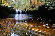 Near Rock Bridge, Creation Falls gives way to the lush forest of the Clifty Wilderness in Kentucky.