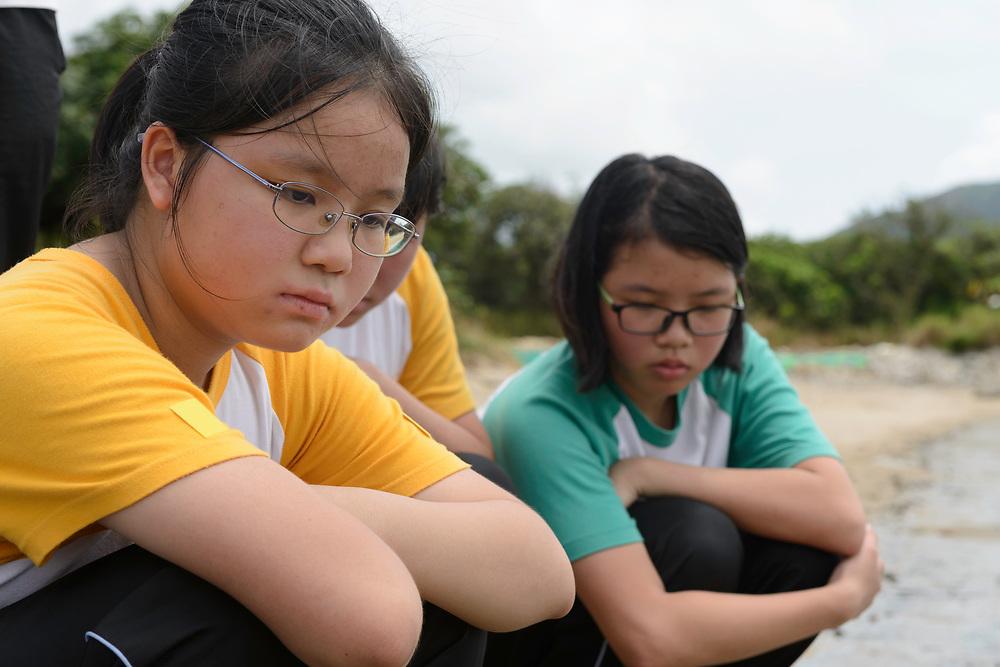 Horseshoe crab release event oragnized by Ocean Park Conservation Foundation, Hak Pak Nai beach, Yue Long, Hong Kong, China. 香港海洋公园保育基金组织鲎野放活动,下白泥海滩,元朗,中国香港。