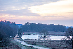 © Licensed to London News Pictures. 12/02/2021. London, UK. Walkers enjoy a frozen Richmond Park, South West London this morning as the big freeze continues with overnight temperatures down to -5c. The Met Office have issue further weather warnings for extreme cold over the weekend with temperatures dropping to as low as -10c in the South East. The freezing weather and travel chaos is expected to last until Sunday. Photo credit: Alex Lentati/LNP