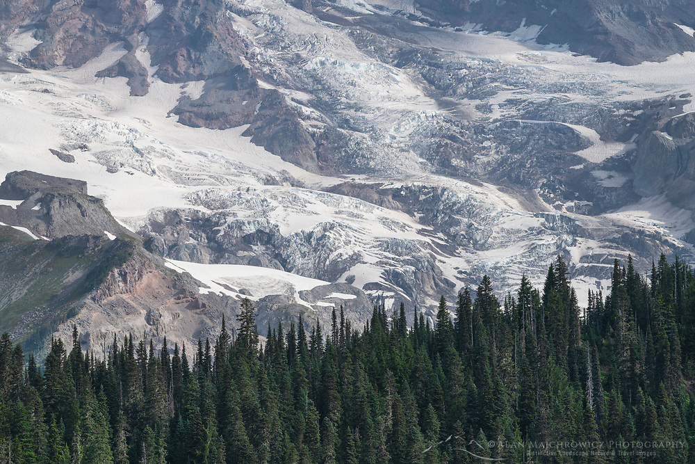 Wilson and Nisqually Glaciers on the south face of Mount Rainier. Mount Rainier National Park