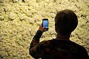 Nederland, Maastricht, 16-3-2012European Art Fair in het MECC. Dit is de grootste kunstbeurs in Europa en ter wereld. 25e editie. Een oudere vroiuw fotografeert met een Iphone een cirkel van witgele rozen bij de entree.Foto: Flip Franssen/Hollandse Hoogte