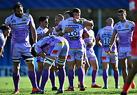 Rugby Union - 2019 / 2020 Heineken Cup - Semi-final - Exeter Chiefs vs Toulouse<br /> <br /> Exeter Chiefs' Dave Ewers hugs Tomas Francis at the final whistle, at Sandy Park.<br /> <br /> COLORSPORT/ASHLEY WESTERN
