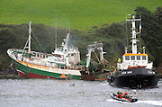 FUNGI THE DINGLE DOLPHIN WATCHES BOAT RESCUE:<br /> This  large fishing vessel is towed to safety and refloated on the water on Saturday afternoon after it had run aground and  ended up on rocks near Dingle harbour in the early hours of Saturday morning. The French-registered boat raised the alarm at 2.30AM on Saturday morning and ten crew members had to be rescued. Valentia Lifeboat and the Dingle Coastguard went to the scene, along with a RIB from the naval vessel the LE Ciara which was docked in Dingle . The operation was co-ordinated from the Coastguard Radio Station on Valentia Island. The crew spent the night in a Dingle hotel and the trawler was successfully refloated on Saturday afternoon with the aid of a Tug boat. <br /> Pictures shoes Fungi The Dingle Dolphin taking great interest in the resuce proceedings at the mouth of the Harbour on Saturday.<br /> Picture: Eamonn Keogh (MacMonagle, Killarney)