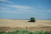 A John Deer combine harvests wheat in the Oklahoma panhandle.