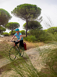 Woman biker riding on dirt track through trees