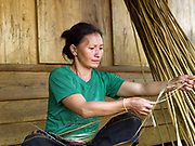 After harvesting, the hemp plant (cannabis sativa) is left to dry in the sun for around 7 days, then the bark is peeled off in long thin lengths, Ban Long Kuang, Houaphan province, Lao PDR. Making hemp fabric is a long and laborious process; the end result is a strong durable cloth with qualities similar to linen which the Hmong women make into skirts for their traditional clothing. In Lao PDR, hemp is now only cultivated in remote mountainous areas of the north.