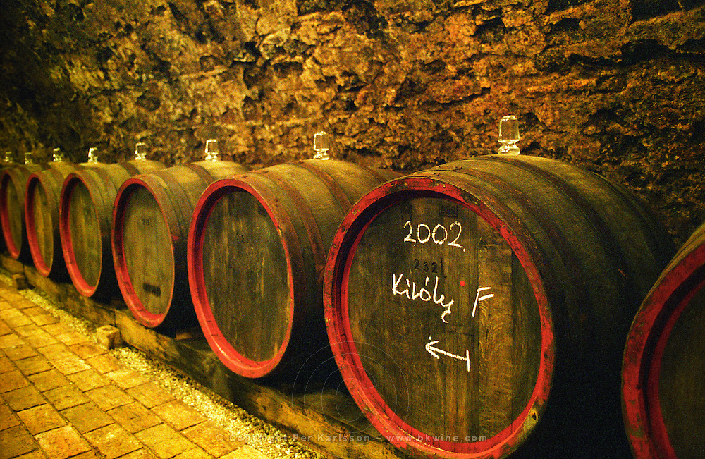 """The Kiralyudvar winery: Rows of barrels with Tokaj wine with glass bung hole stoppers in the ageing cellar. 2002 marked on the barrel. Kiralyudvar (meaning """"King's Court"""")is run by Istvan Szepsy, considered maybe the best winemaker in Tokaj. he also makes Tokaj under his own name. Credit Per Karlsson BKWine.com"""