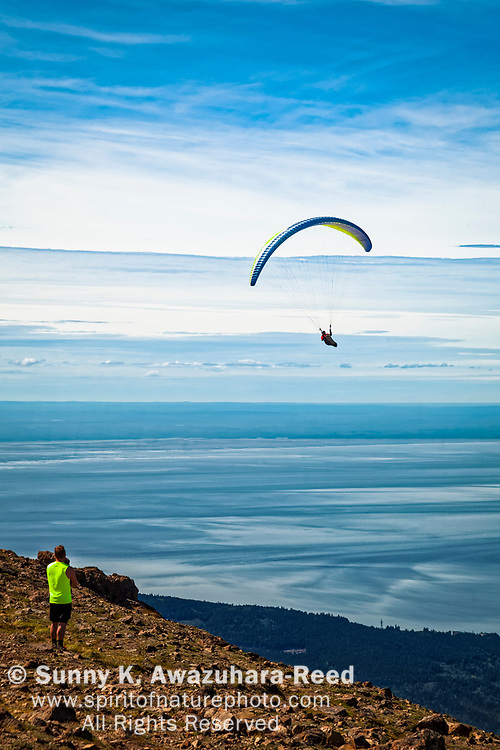 A hiker looking at a paraglider in blue sky. Chugach State Park, Southcentral Alaska, Summer. Vertical.