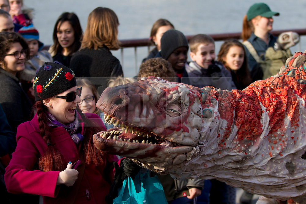 © Licensed to London News Pictures. 18/02/2013. London, UK. An actor in a costume representing an 'Australovenator', a species of dinosaur discovered in Australia in 2009, meets children on London's Southbank today (18/02/2013) as part of the 'Dinosaur Petting Zoo'. The 'Dinosaur Petting Zoo', an interactive puppetry show by company Erth, runs from the 18th to the 20th of February as part of London's Southbank Centre's 'Imagine Children's Festival'. Photo credit: Matt Cetti-Roberts/LNP