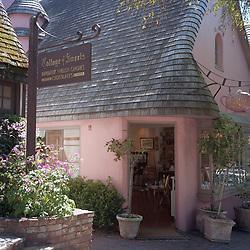 Carmel, California town scenes and galleries
