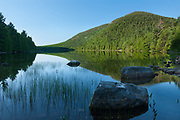 Bubble Pond, Acadia NP, Maine<br /> The sun had been up a half hour or more, but only now had blessed this side of Pemetic Mountain to the shore line below.  I waited all that time for the shadow's retreat from the summit, day's light blocked by the long ridgeline of Cadillac Mountain to the East.  The pond was a chromatic mirror this early, broken by some random arrowhead plants, and a garden of lake reeds.   While the light gathered and gave details to shadows, I lost myself in thought, focusing on the reeds like the straws of my burdens.  I could name them each--money, work, health, bills, deadlines--the forest of our daily lives.  Guilts I still carry of things I've done; the pain of things done to me.  The expectations of people I love, as well as the weight of the burdens they carry.  Because, after all, what kind of man would I be not to share their load as well? The most straws belong to love, I guess.  They would be planted in deeper waters. The weight of love can be the lightest...and the heaviest.  And way out there, the last straw, love's betrayal. Morning is here, time to move...