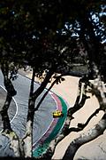 October 30-Nov 1, 2020. IMSA Weathertech Raceway Laguna Seca: #85 JDC-Miller Motorsports Cadillac DPi, DPi: Gabriel Aubry, Tristan Vautier