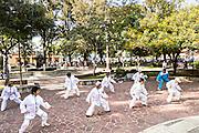 Elderly women practice Tai Chi for exercise in Conzatti Park Oaxaca, Mexico.