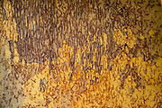 An orange & yellow patina of rust and cracked paint at Fort Nelson Heritage Museum, 5553 Alaska Highway, Fort Nelson, British Columbia, Canada. This quirky museum features a highway construction display, pioneer artifacts, trapper's cabin, vintage autos & machinery, a white moose, and more.