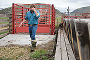 Lockhart Cattle Company, Jackson, Wyoming<br /> Photo by David Stubbs