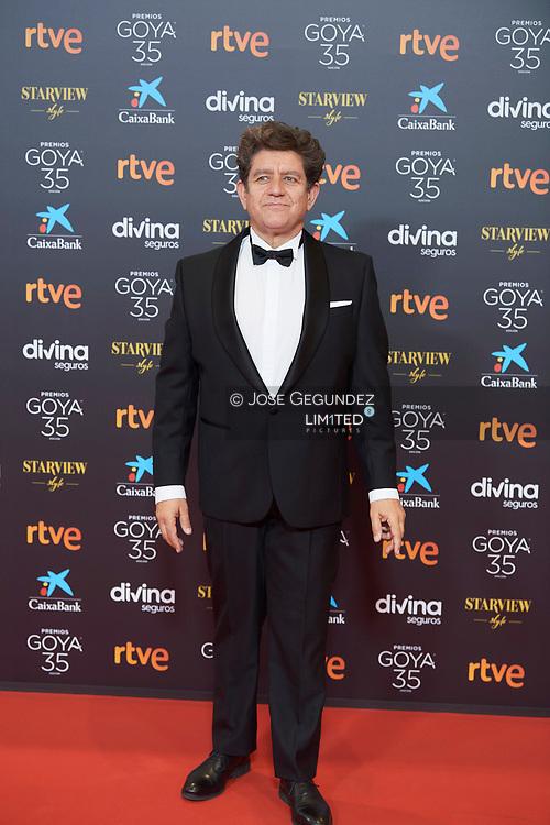 Pedro Casablanc attends 35th Goya Cinema Awards 2021 - Red Carpet at Gran Hotel Miramar on March 6, 2021 in Malaga, Spain