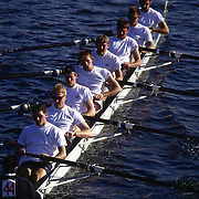 """A team of """"eights"""" scull racing on the Charles River between Boston and Cambridge, MA"""