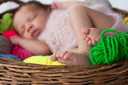 Cute newborn baby girl sleeping with ball of wools in basket, Fuerstenfeldbruck, Bavaria, Germany