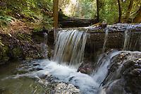 A stream flows across the Pine Ridge Trail, Big Sur, California.