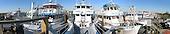 Captree Fishing Fleet - Panarama