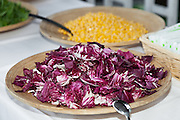 party outdoors, tasty appetizer, red salad