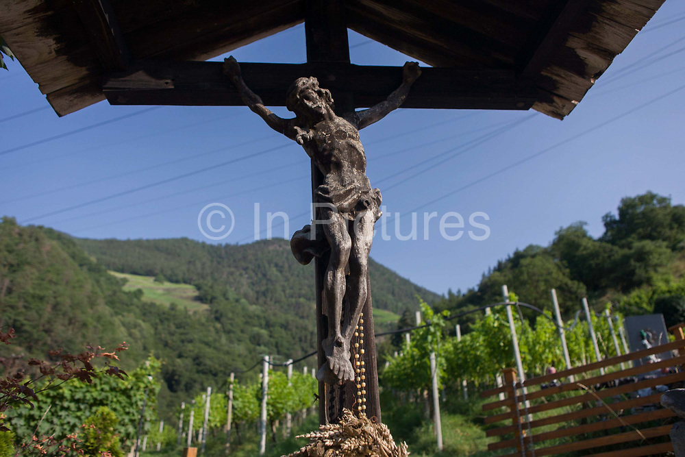 A crucifix located on the edge of a vineyard in the South Tyrolean town of Klausen-Chiusa in northern Italy. South Tyrol is a very religious and traditional country. The weekly walk to Mass and the celebration of religious festivals and processions are part of the culture and tradition in South Tyrol. In almost every house you will find a cross on a corner with consecrated palm branches over there. Also in the stable there are consecrated palm branches to keep away every disaster. South Tyroleans are almost all Catholics and quite conservative.