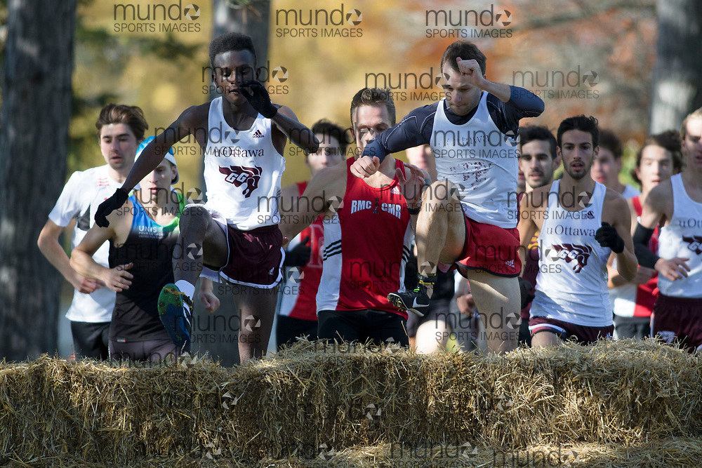 (Ottawa, Canada---13 October 2018) University of Ottawa GeeGees Athletes racing in the 2018 Jim Howe Memorial XC Challenge at Mooney's Bay Park in Ottawa, Canada.