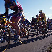 Cyclocross starting line.Photo by Roger S. Duncan.  ...