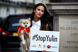 © Licensed to London News Pictures. 07/06/2016. London, UK. LUCY WATSON protests against China's Yulin dog meat festival and supports handing in an 11 million-signature petition against the festival, outside Chinese Embassy in London on Tuesday, 7 June 2016. Photo credit: Tolga Akmen/LNP