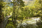 View of a metal footbridge across river in a forest at the beginning of the Routeburn Track, Routeburn Shelter, South Island, New Zealand