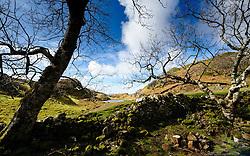 The Fairy Glen, (Glen Uig),  Trotternish Peninsula,  Isle of Skye, Scotland<br /> <br /> (c) Andrew Wilson | Edinburgh Elite media