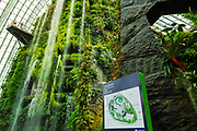 The Fall in the Cloud Forest Dome, Gardens by the Bay, Singapore, Republic of Singapore