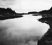 En route to the coast from Neah Bay, you pass the Waatch River, a lush nesting place for waterfowl. (Josef Scaylea / The Seattle Times, 1977)