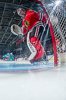 KELOWNA, CANADA - APRIL 14: Cole Kehler #31 of the Portland Winterhawks scuffs the crease at the start of the game against the Kelowna Rockets on April 14, 2017 at Prospera Place in Kelowna, British Columbia, Canada.  (Photo by Marissa Baecker/Shoot the Breeze)  *** Local Caption ***