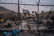 Mytilini, Lesvos, 10/09/20   A dog overwatches the ramains of the burned down Moria refugee camp just days after a large fire turned the camp home to thousands of migrants and refugees to ashes.