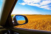 Image of a wheatfield as seen from a Porsche Cayenne near Steptoe Butte in the Palouse, Washington, Pacific Northwest, property released by Randy Wells