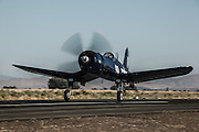 Chance-Vought F4U-7 Corsair of the Erickson Aircraft Collection taking off.
