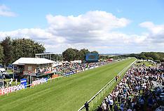 Salisbury Races - 17 Aug 2017