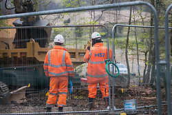 Wendover, UK. 28th April, 2021. HS2 workers observe a large mechanical digger being used for the 'translocation' of soil as an environmental mitigation measure for the HS2 high-speed rail link in ancient woodland at Jones Hill Wood in the Chilterns AONB. Felling of the woodland which contains resting places and/or breeding sites for pipistrelle, barbastelle, noctule, brown long-eared and natterer's bats has recommenced after a High Court judge yesterday refused campaigner Mark Keir permission to apply for judicial review and lifted an injunction on felling.